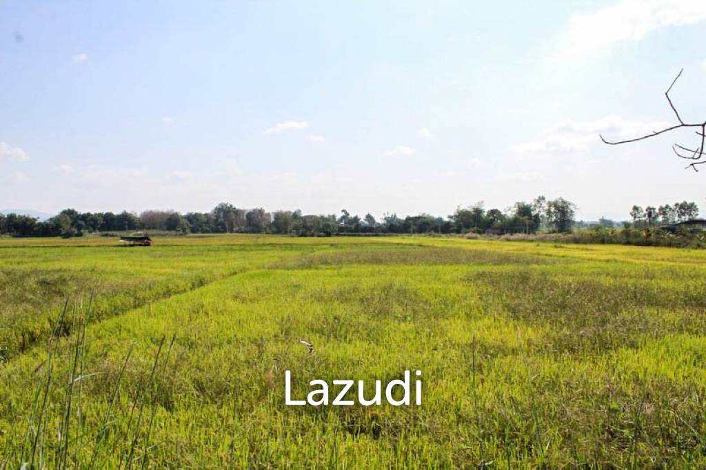 Large Land for Sale